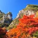 2016年山梨県のおすすめ紅葉スポット!見頃やアクセスを紹介します!